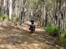 Von Busselton nach Geraldton_17