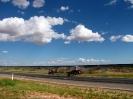 Von Geraldton nach Broome_55