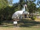 Townsville - Brisbane