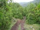 Von Chaiten nach Bariloche_5