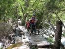 Von Chaiten nach Passo Bermejo_28
