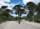 Von Chaiten nach Passo Bermejo_49