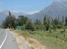 Von Chaiten nach Passo Bermejo_59
