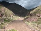 Von Chaiten nach Passo Bermejo_87