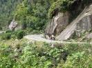 Von Chaiten nach Passo Bermejo_9