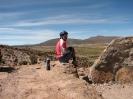 Von Colchane nach Arica_11