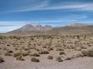 Von Colchane nach Arica_14