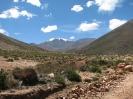 Von La Poma nach Colchane_6