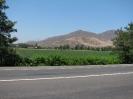 Vom Passo Bermejo nach La Poma_2