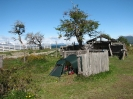 Von Punta Arenas nach El Calafate_23