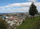 Von Punta Arenas nach El Calafate_5