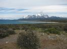 Von Punta Arenas nach El Calafate_93