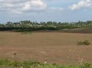 Von Habana nach Trinidad_64